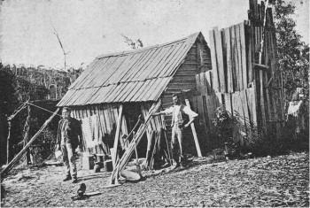 """Eine Bergarbeiter-Behausung im Westen Tasmaniens (""""A miner's hut"""") Foto: H.W. Judd, 1894."""