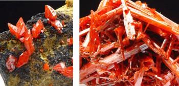 Links: Doppelendige, kurzprismatische Kristalle aus der Dundas Extended Mine. Rechts: Typisches wirrstrahliges Aggregat langprisma-tischer Krokoitkristalle aus der Adelaide Mine. Foto: Christian Nockemann.